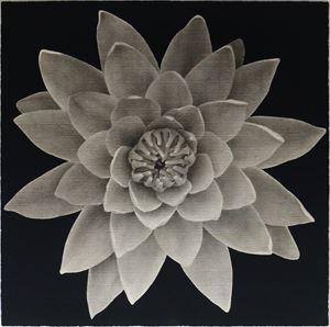 Flowery World: Lotus 花花世界:康乃馨 by Lee Chun-yi contemporary artwork