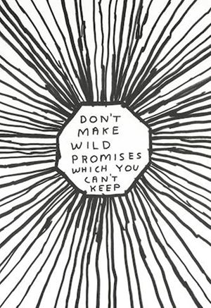 Don't make wild promises which you can't keep by David Shrigley contemporary artwork