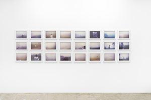 Mist collecting by Brígida Baltar contemporary artwork photography, performance