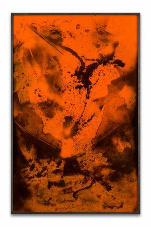 Vadavarot by Bettina Scholz contemporary artwork