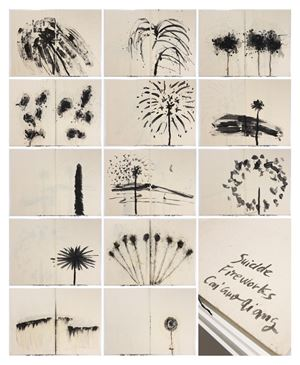 Danger Book: Suicide Fireworks by Cai Guo-Qiang contemporary artwork
