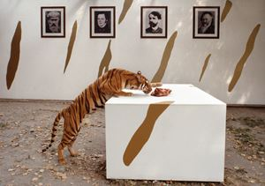 Last Congress by Braco Dimitrijević contemporary artwork