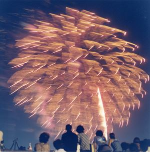 Untitled, from the series 'Hanabi' by Rinko Kawauchi contemporary artwork