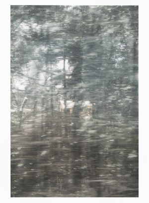 Untitled (glass, forest, house), by Sam Shmith contemporary artwork
