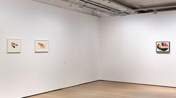Contemporary art exhibition, Tom Wesselmann, Tom Wesselmann at Almine Rech, London, United Kingdom