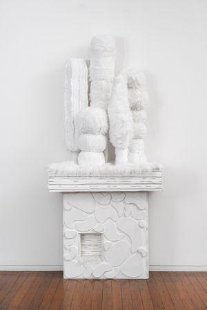 Mantle Garden by Kathy Temin contemporary artwork