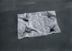 Target at Aquatic Water by Kishio Suga contemporary artwork