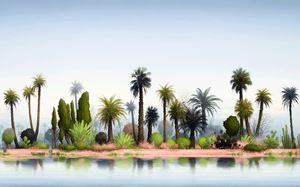 Pink palm suite by Alexander McKenzie contemporary artwork