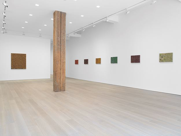 Exhibition view: James Hayward, Miles McEnery Gallery, New York (6 September–6 October 2016). Courtesy Miles McEnery Gallery.