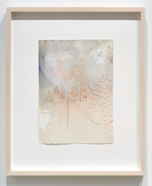 Blushing Bruising VII by Margaux Crump contemporary artwork
