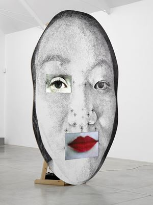 ANO by Tony Oursler contemporary artwork