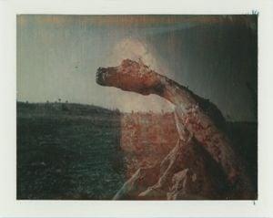 Double exposure by Sidney Nolan contemporary artwork