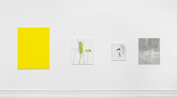 Contemporary art exhibition, Mayo Thompson, Go to the window at Galerie Buchholz, Berlin