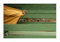 Unfold III by Surabhi Saraf contemporary artwork photography