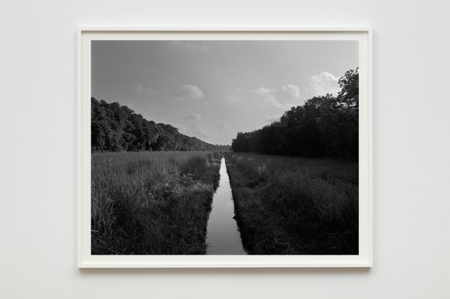 Irrigation Ditch by Dawoud Bey contemporary artwork