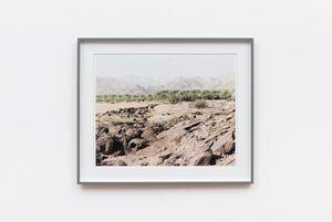 Klein Pella, (date plantation), Northern Cape, 5 June 2004 by David Goldblatt contemporary artwork