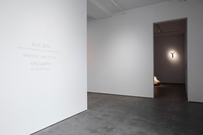 Exhibition view: Kris Martin, ?DO GEESE SEE GOD?,Sean Kelly, New York (21 March 21–27 April 2019) Courtesy Sean Kelly, New York. Photo:Jason Wyche, New York.