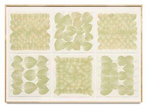 Edibles Sextet – NTUC Finest, Freshmart Singapore, Perilla Leaves, each 50 g; Meidi-Ya, Unknown, Shiso, each 50 g by Haegue Yang contemporary artwork