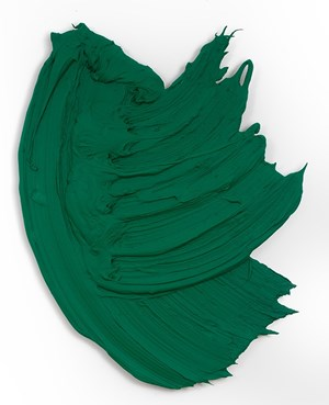Tinqui-Boro by Donald Martiny contemporary artwork