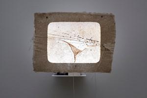 Letter 6 by Amar Kanwar contemporary artwork