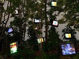 Nam June Paik has the last laugh