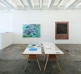 Exhibition view:Bahar Behbahani,Garden Coup, Thomas Erben Gallery, New York (19 May–25 June 2016). Courtesy Thomas Erben Gallery.