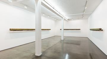Contemporary art exhibition, David Thorpe, UNDERGROUND at Maureen Paley, London