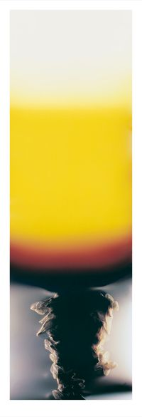 Bruissement #18, The Bee Wing Photograms by Anne Noble contemporary artwork print