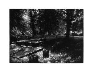 Hehlentorfriedhof by Stefanie Hofer contemporary artwork