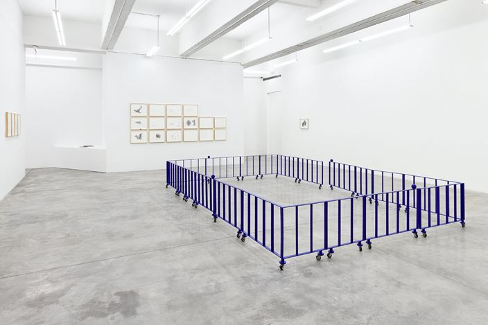 Exhibition view: Chung Seoyoung, Ability vs. Invisibility, Tina Kim Gallery, New York (2 March–15 April 2017). Courtesy Tina Kim Gallery.