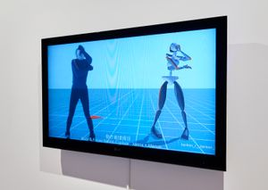 DOKU - Body Capture Documentary by Lu Yang contemporary artwork