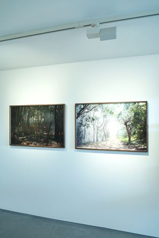 Exhibition view: Group Exhibition,Women in Photography - Lay of the Land, Informality, Henley-on-Thames (15 October–24 November 2020). Courtesy Informality.