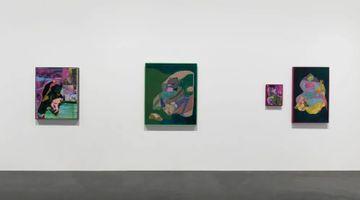 Contemporary art exhibition, Eva Zhang, Roarrrrr at Tabula Rasa Gallery, Beijing