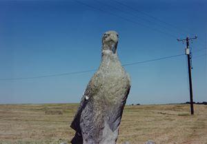 Bird Statue by Samuel Laurence Cunnane contemporary artwork