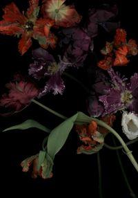 Stockage 113 by Luzia Simons contemporary artwork photography