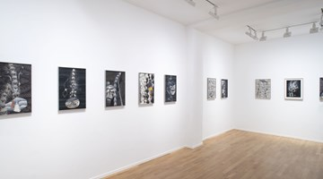 Contemporary art exhibition, Atul Dodiya, The Fragrance of a Paper Rose at Templon, 30 rue Beaubourg, Paris, France