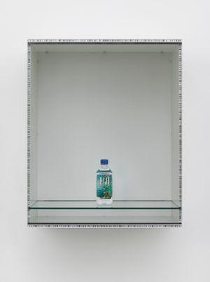 Untitled (Fiji) by Haim Steinbach contemporary artwork