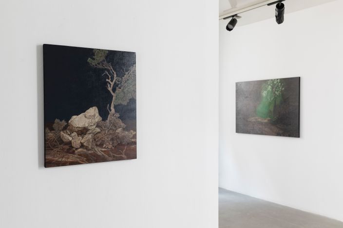 Exhibition view: Li Donglu, Take Root, A2Z Art Gallery (3 May–26 May 2021). Courtesy A2Z Art Gallery.