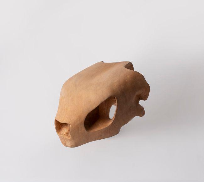 Turtle Skull by Friday Jibu contemporary artwork