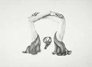 Bridged connection by Patricia Piccinini contemporary artwork drawing