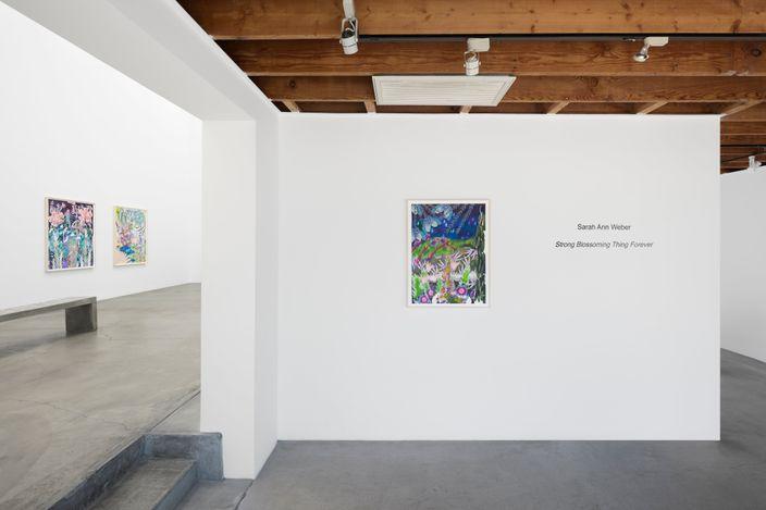 Exhibition view: Sarah Ann Weber, Strong Blossoming Thing Forever, Anat Ebgi, Culver City, 2660 S La Cienega Blvd (18 June–31 July 2021). Courtesy Anat Ebgi, Los Angeles.
