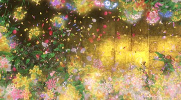 Contemporary art exhibition, teamLab, Flowers and People at Martin Browne Contemporary, Sydney