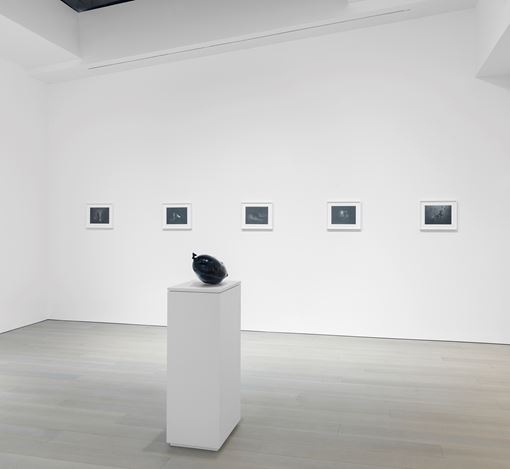 Exhibition view: Tom LaDuke, Miles McEnery Gallery, 525 West 22ndStreet, New York (15 November–22 December 2018). Courtesy Miles McEnery Gallery.