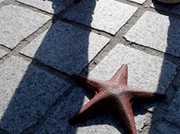 Don't Step on the Starfish: Elmgreen & Dragset at FIAC