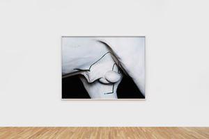 Phaedrus by Viviane Sassen contemporary artwork