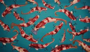 Plastic Fish by Lee Yongbaek contemporary artwork