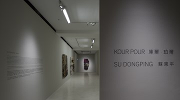 Contemporary art exhibition, Su Dong Ping, Kour Pour, Two Solo Exhibitions at Pearl Lam Galleries, Pedder Street, Hong Kong