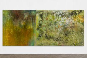 Night Rain, Morning Mist (Poestenkill, N.Y., Spring) by Sam Falls contemporary artwork