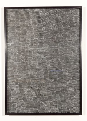 Untitled by Nyapanyapa Yunupiŋu contemporary artwork