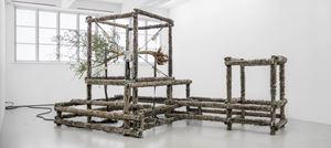 a wolf, an olive tree and circumstances by Siobhán Hapaska contemporary artwork